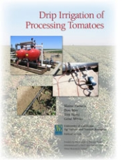Drip Irrigation of Processing Tomatoes