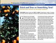 Tried and True or Something New? Selected Citrus Varieties for the Home Gardener