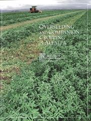 Overseeding and Companion Cropping in Alfalfa