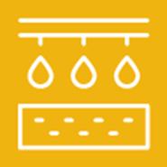 Nutrient Management Goals and Management Practices for Cool-Season Vegetables