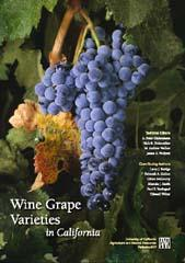 Wine Grape Varieties in California