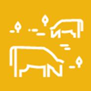 Dryland Pastures: Establishment and Management in the Intermountain Region . . .
