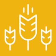 Small Grain Production Pt 9: Pest Management -- Weeds