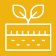 Minimum Tillage Vegetable Crop Production in California