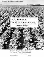Nematodes: Sugar Beet Management