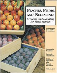 Peaches, Plums, and Nectarines: Growing and Handling for Fresh Market
