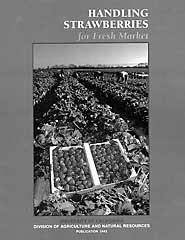 Handling Strawberries for Fresh Market