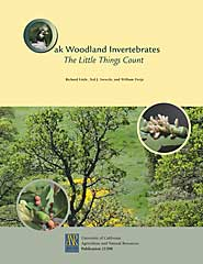 Oak Woodland Invertebrates: The Little Things Count