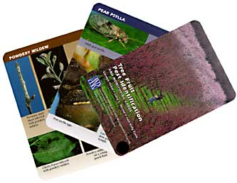 Tree Fruit Pest Identification and Monitoring Cards