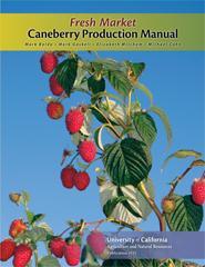 Fresh Market Caneberry Production Manual