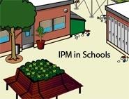IPM in schools DVDs